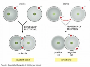 complementation - covalent bonds